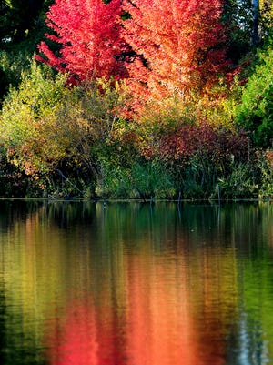 Colorful leaves are reflected in the lagoon at the Bay Beach Wildlife Sanctuary in Green Bay, Thursday, October 9, 2014.