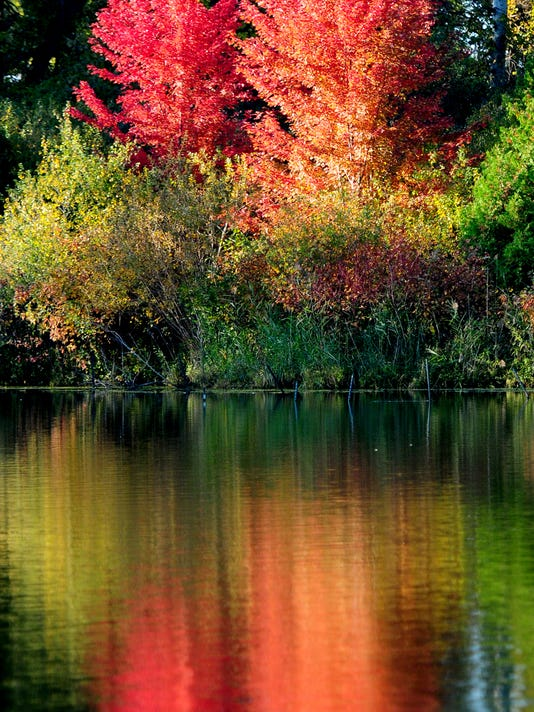 GPG 100914 Fall Colors015.jpg