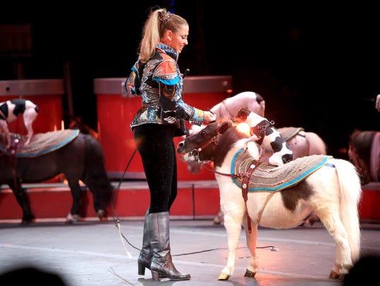 2014 Circus