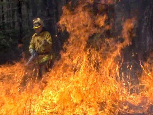 brush fire file.jpg