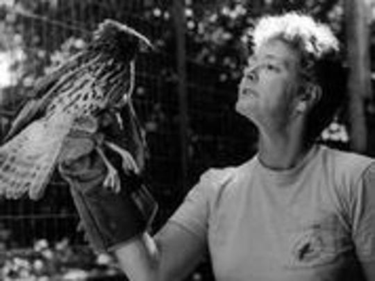 CROW founder Shirley Walter helps rescue a hawk.