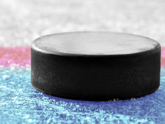 636210293886923347-Hockey-Puck.jpg