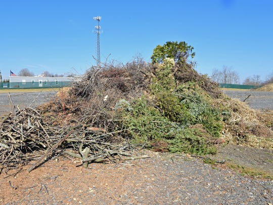 A pile of discarded Christmas trees rest on the grounds at the new Chambersburg Green Yard Waste facility at Commerce Street, just off North Franklin Street. The facility will officially open in April.