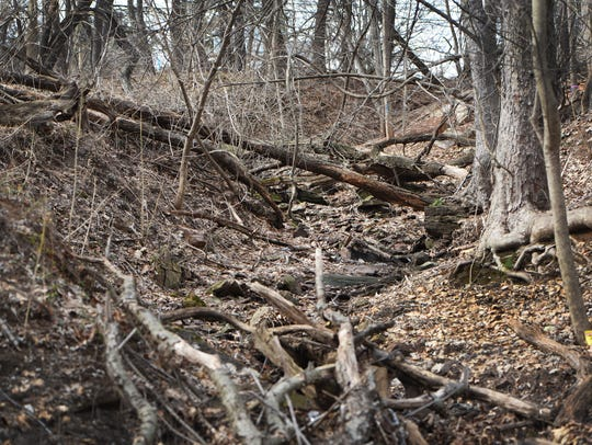 """Photo of  a culvert called """"Stormwater Canyon"""" showing"""