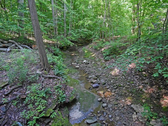 A stream running through the woods on the OSUM campus is just one of many scenic views available on the grounds.