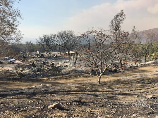 Charlie Kimball and his family's avocado ranch suffered catastrophic damage during the Thomas Fire.