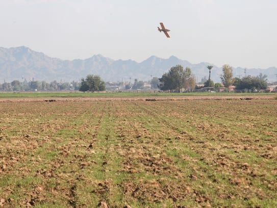 A crop duster sprays a field near Blythe.