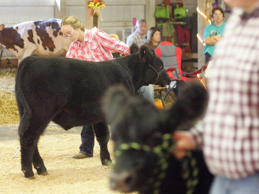 Showman of Showmen contest at the Coshocton County Fair.