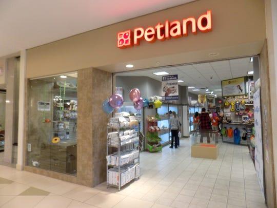 The Petland store in Novi.