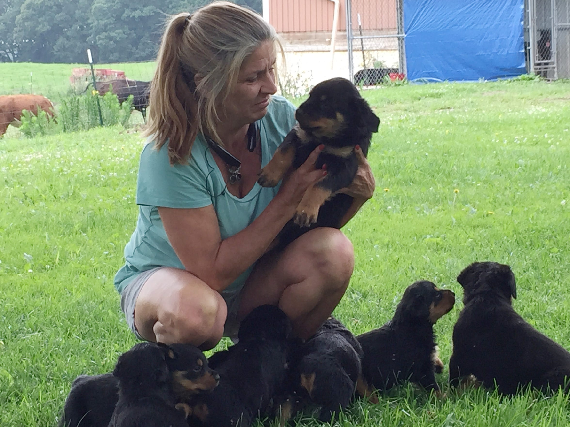Karen McMaster of Hartland Township with her Rottweiler puppies that she breeds. Her husband, Robert McMaster, was injured when a truckload of steel guard rails that he was unstrapping fell on him. He died several days later.