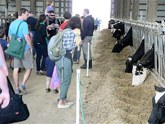 Visitors toured the freestall barn at Rollin' Green