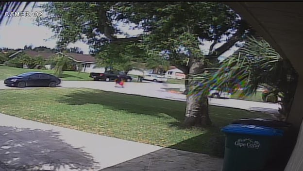 Cape Coral Police Department released this still from surveillance footage of the arson.