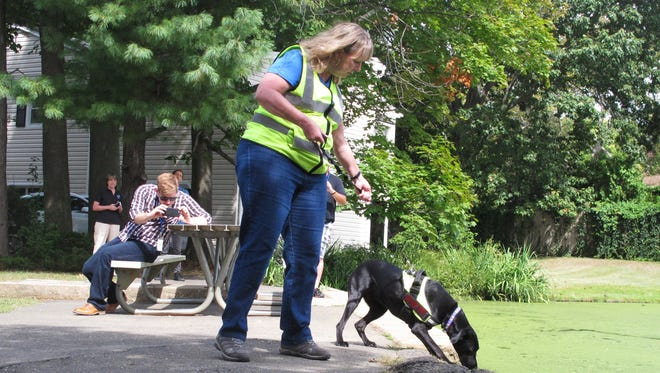 Karen Reynolds of Maine-based Environmental Canine Services leads a dog along the shore of a pond in Fair Haven in September to sniff out sources of human waste that might be making their way into waterways at the Jersey Shore.