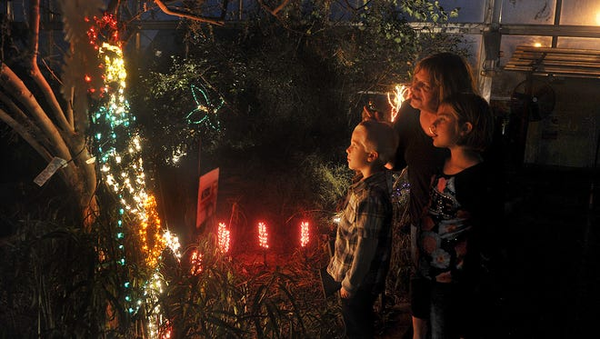 After a final tour through the lighted displays of Electricritters, go inside at River Bend Nature Center for some hot chocolate and treats.