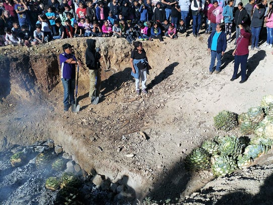 A pile of mescal plants waits to be offered while others begin the roasting process in the pit. Staff from the tribe's cultural department offered guidance during the ritual.