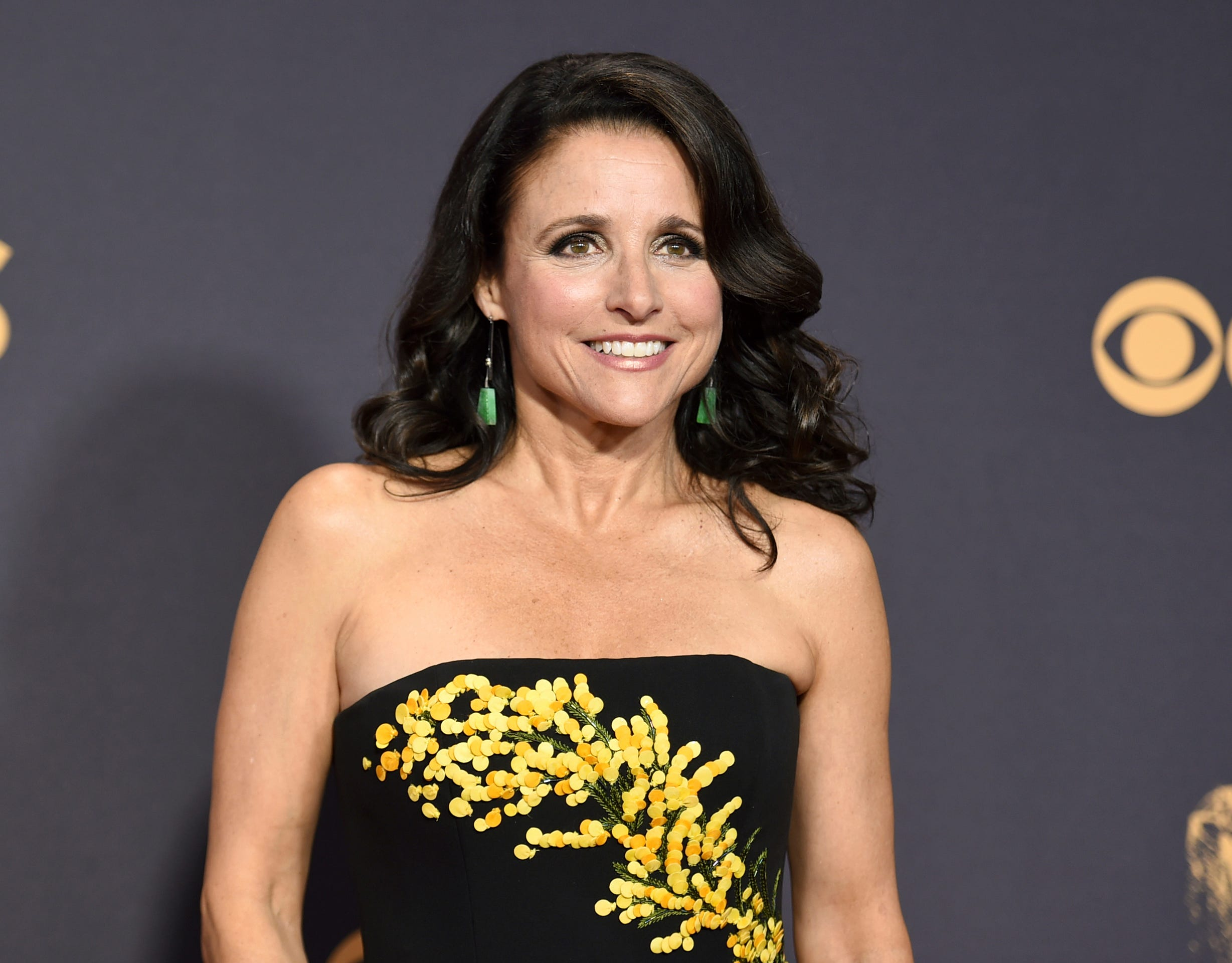 Communication on this topic: Preeti Ganguly, julia-louis-dreyfus/
