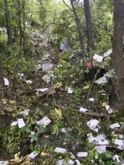 The scene of the Springfield Township plane crash, Wednesday, June 13, 2018.
