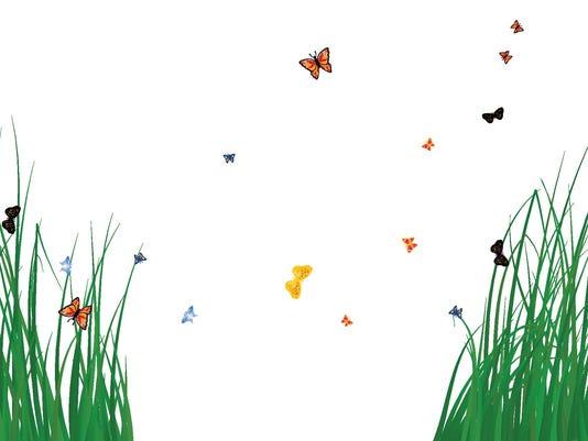Grass_butterflies2