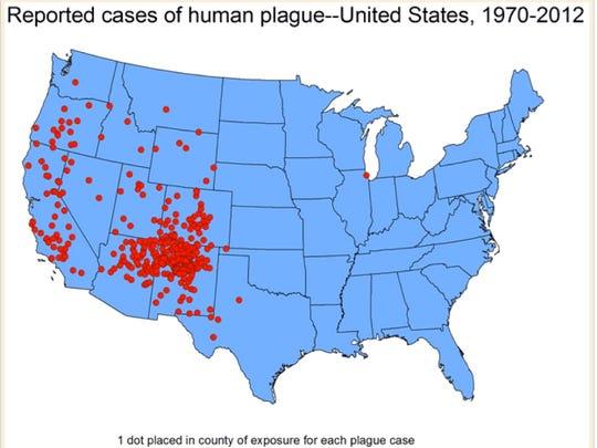 Plague cases