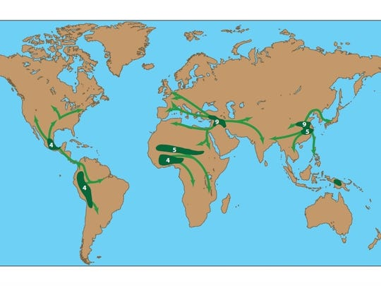 Agriculture's spread worldwide