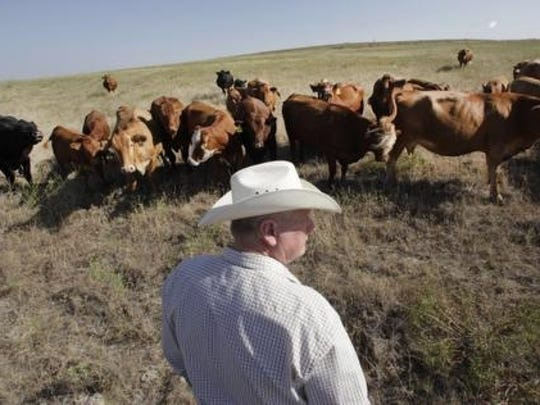 Texas cattle rancher