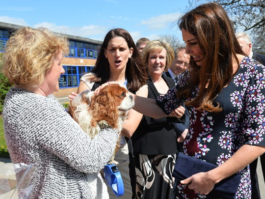 Duchess Kate and dog fan