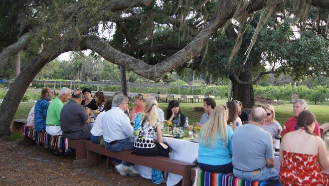 Farm to Table events are a great way to enjoy locally-raised food in the beautiful Florida outdoor.