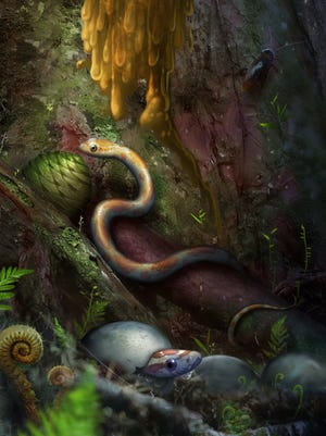 An artist's conception of snakes that recently emerged from their eggs, on the floor of the amber-producing forest of Myanmar 99 million years ago..