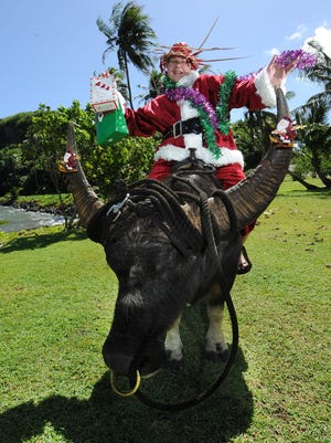 """In this file photo, """"Jingle George"""" prepares to spread some holiday joy on the back of Do'ak the carabao at Talofofo Bay."""