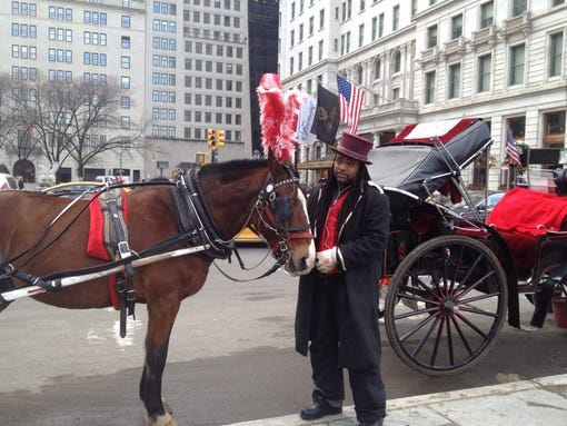 new york citys horse drawn carriages should they They also added a new island habitat for birds and turtles,  central park carriages are a new york city  horse-drawn carriages can be found lined up along.