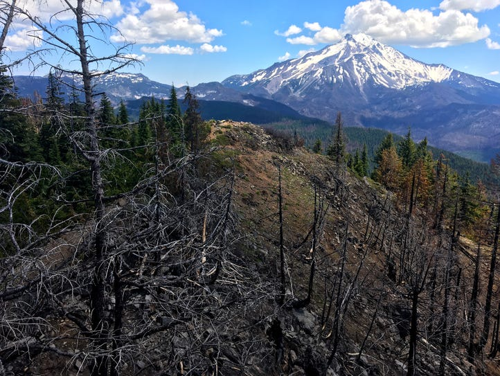 Views from Triangulation Peak of area burned and unburned