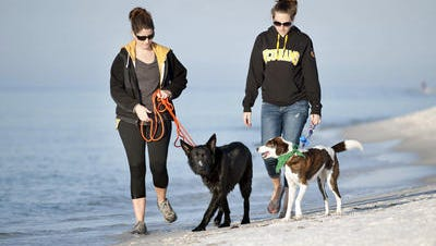 Erin Chandler and her dog Bodhi and Audrey Thacker and her dog Tango made the trip from Pensacola early Friday morning to be among the first to enjoy one of two new dog parks on Pensacola Beach.