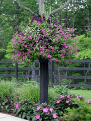 Every potted arrangement should have a little height