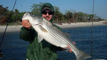 Paul DeJohn, Bluebell, Pa., got this striper fishing with Reel Fantasea Fishing Charters out of Barnegat. Photo courtesy of Capt. Steve Purul.