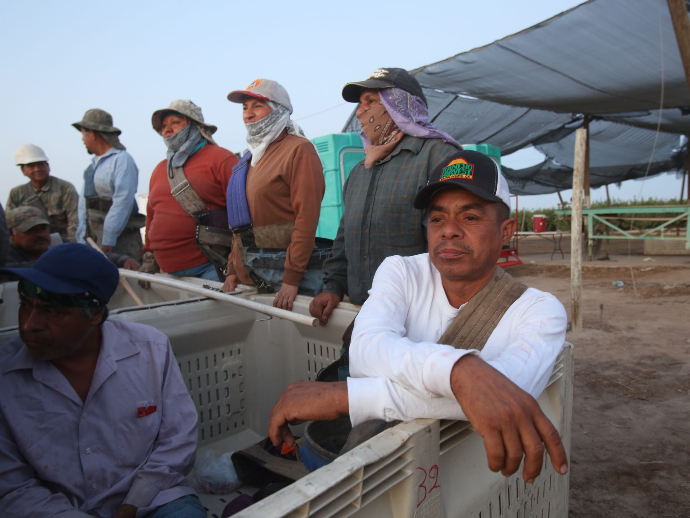 Francisco Alvarez Bautista gets ready to begin his labor in the fields at the crack of dawn with a dozen other workers near the Salton Sea.