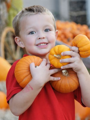Among this weekend's family-friendly events is a pumpkin festival in Fort Myers.