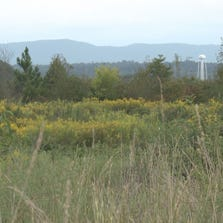 The empty field was once the site of ALCOA's West Plant.  It will now house a new Sam's Club.
