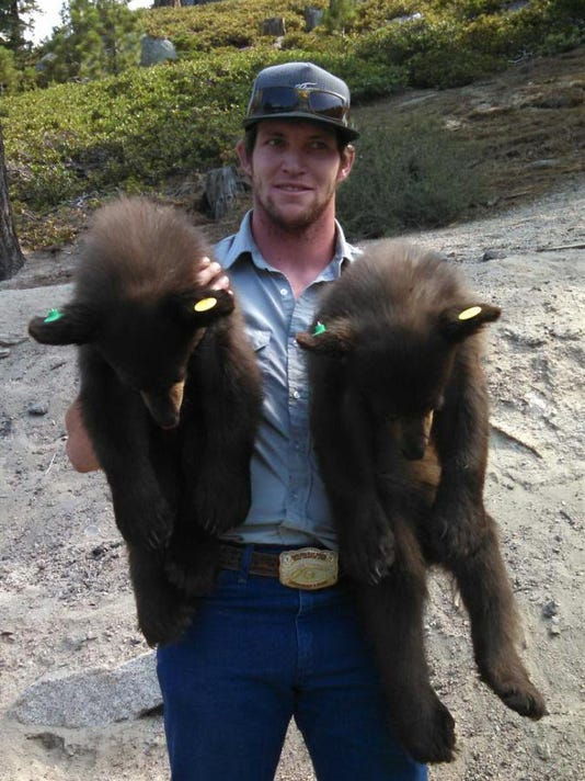 7-16-14   Bear Cubs at Kingsbury Grade.jpg