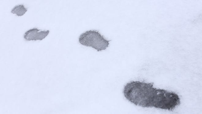 Footprints in the snow in Salem on Jan. 8, 2016. A winter storm hit the capital city and surrounding areas on the weekend.