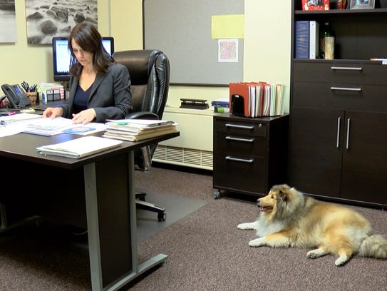 Finn relaxes while Vanderburgh County Deputy Prosecutor