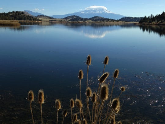 Trout Lake provides nice views of Mt. Shasta. It's