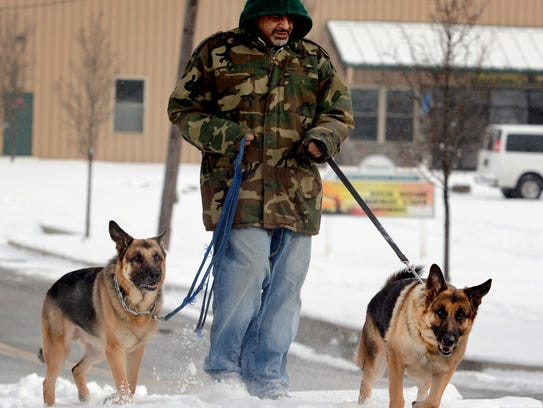 Cane Torres of York City walks his German shepherds