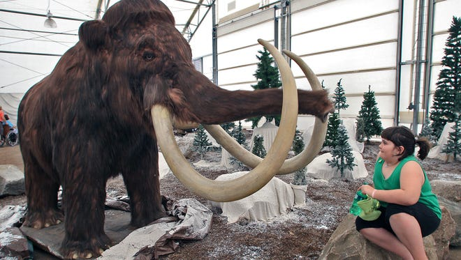 Bryanna Greenwood, age 8, got a close up view of the wooly mammoth at the Ice Age Mammals exhibit at the season opening day at Iowa's Blank Park Zoo on March 17, 2012.