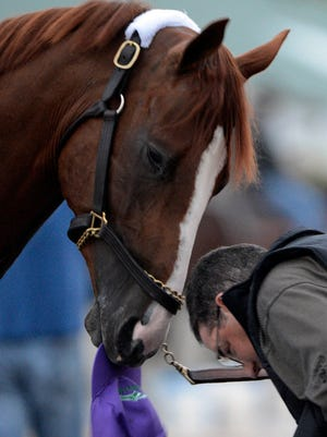 California Chrome steals a hat from assistant trainer Alan Sherman following a morning workout out at Churchill Downs on Tuesday.