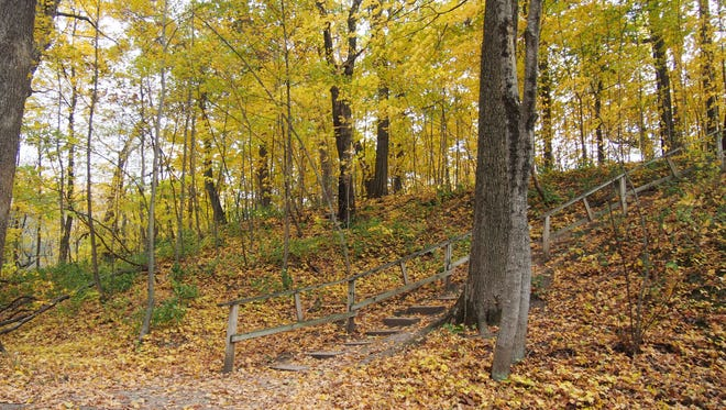 A wooden walkway is part of a loop trail system that runs through Hobbs Woods in Fond du Lac County. The popular park may shut down for a year because of overuse, misuse and abuse. A committee will make recommendations to the Fond du Lac County Board.