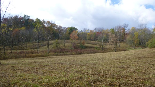 Randall Derror's 199-acre property south of Lucas is now permanently conserved, thanks to the Western Reserve Land Conservancy.