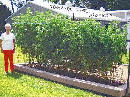 -Harp Tomatoes.jpg_20150223.jpg