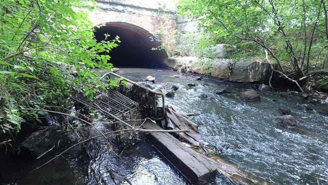Trout Brook as it runs through the old CSX railyard, where the homeless encampment used to be  on Friday, July  10, 2020.