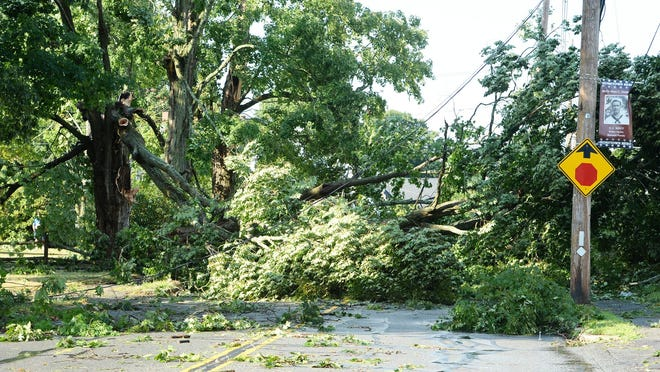 A tree blocks Union Street after a tropical storm brings power outages, downed trees to Bridgewater, Saturday, Aug. 22, 2020.