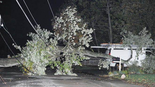 A tree fell onto power lines on Dartmouth Street in Brockton, Wednesday, Oct. 7.